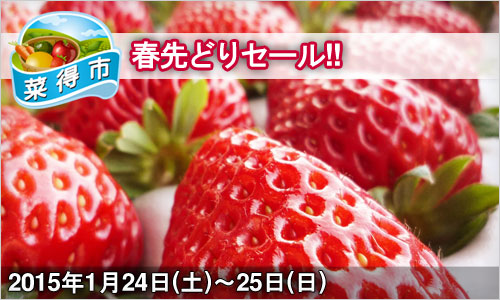 ふれ藍の里:春先どりセール!! 2014年1月24日(土)~25日(日)ページ追加