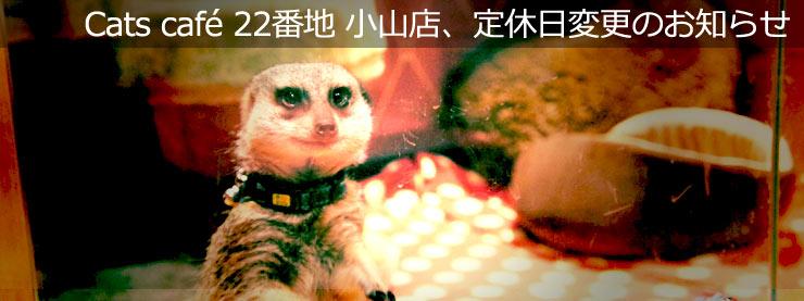 22番地:Cats cafe 22番地 小山店、定休日変更のお知らせ