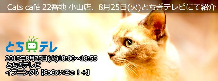 22番地:8月25日(火)とちぎテレビにて紹介のお知らせページ追加