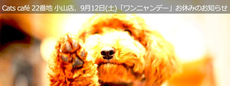 22番地:9月12日(土)「ワンニャンデー」お休みのお知らせページ追加