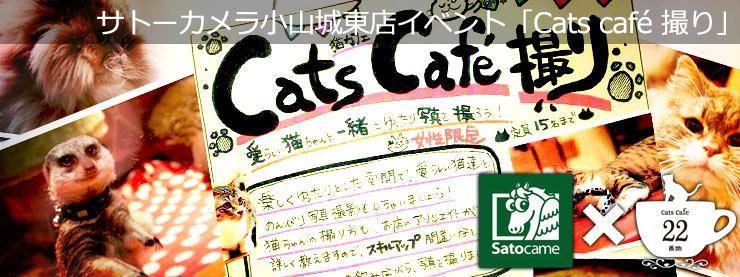 22番地:サトーカメラ小山城東店イベント「Cats cafe 撮り」ページ追加