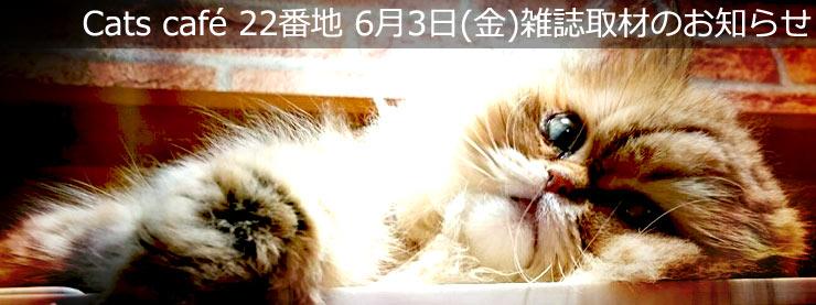 22番地:6月3日(金)雑誌取材のお知らせページ追加