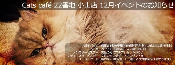 22番地:12月イベントのお知らせページ追加