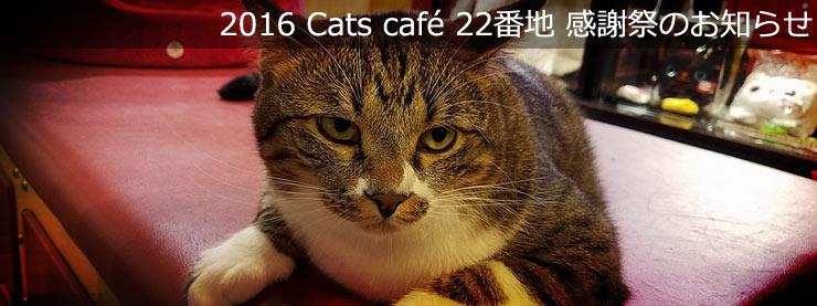 22番地:2016 Cat Cafe 22番地 感謝祭のお知らせページ追加