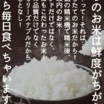 松丸米店 A1サイズポスター
